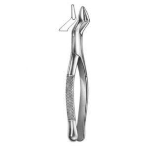 Dental Forcep American Patterns